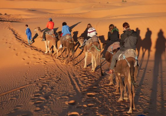 3 Days Camel Trekking Excursions