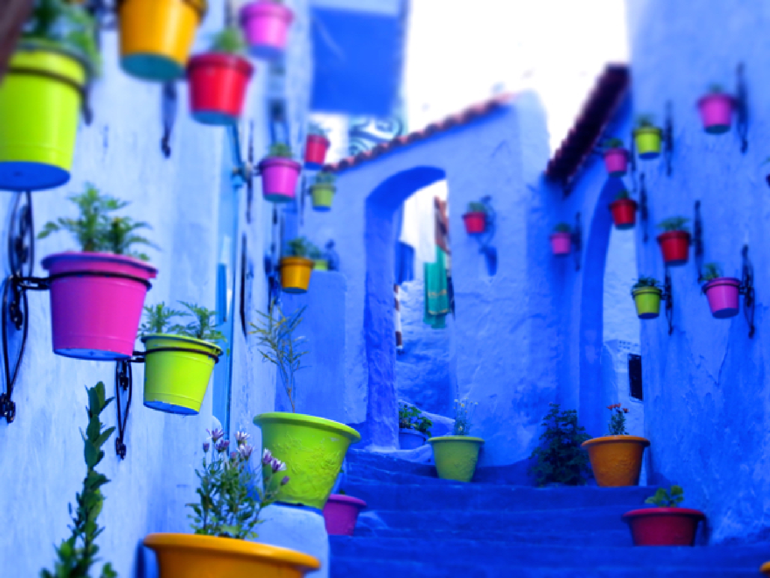 day trip from Fes to Chefchaouen